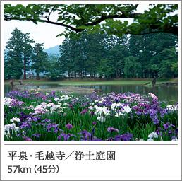 平泉・毛越寺/浄土庭園